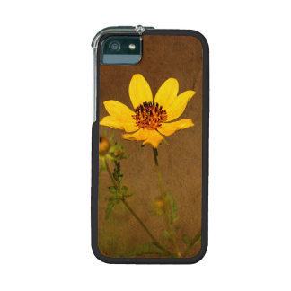 Autumn Yellow Wild Flower iPhone5/5S Case Cover For iPhone 5