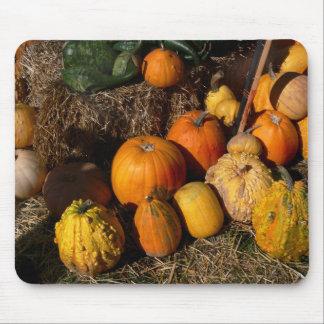 autumnal abundance mouse mat
