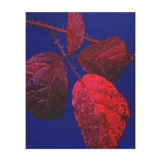 Autumnal Briar Leaves 2 Canvas Print