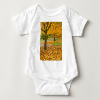 Autumnal leaves in park baby bodysuit