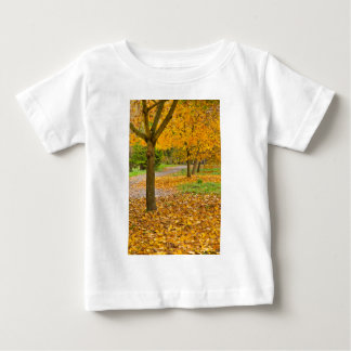 Autumnal leaves in park baby T-Shirt