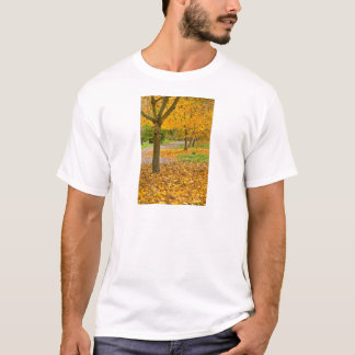 Autumnal leaves in park T-Shirt