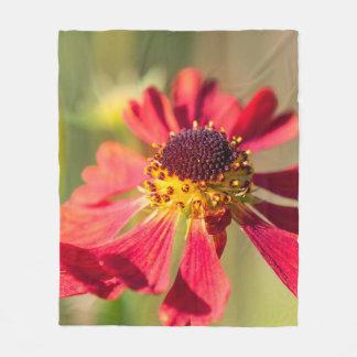 Autumnal  on this fleece blanket, Echinacea