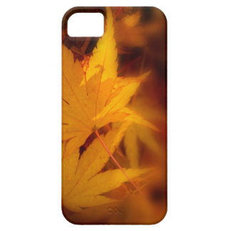 Autumnal serenity. iPhone 5 cover