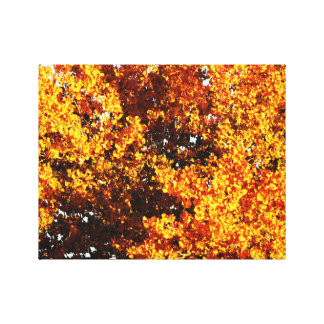 Autumns Beginning Gallery Wrapped Canvas