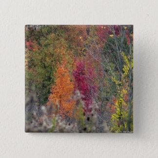 Autumn's Palette Button