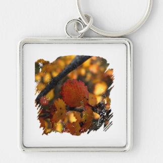 AV Autumn Vibrance Silver-Colored Square Key Ring