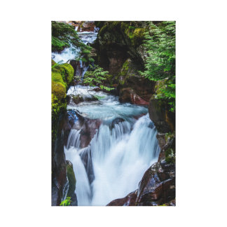 Avalanche Creek Glacier National Park Canvas Print