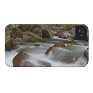 Avalanche Creek in Glacier National Park in iPhone 4 Case