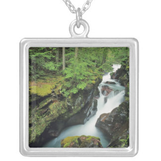 Avalanche Gorge in Glacier National Park in Silver Plated Necklace