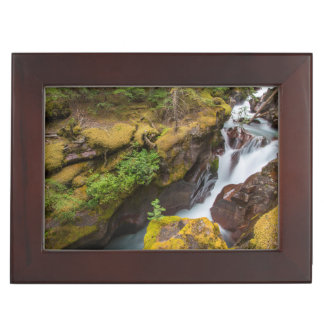 Avalanche Gorge In Glacier National Park Keepsake Box