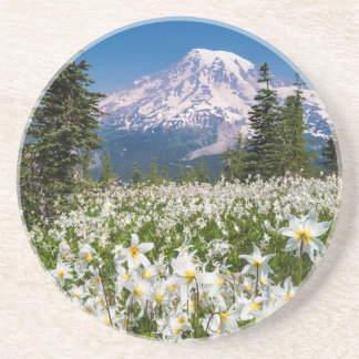Avalanche lilies and Mount Rainier 2 Beverage Coasters