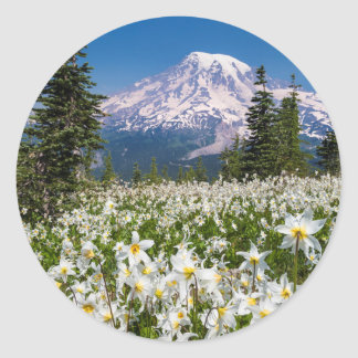 Avalanche lilies and Mount Rainier 2 Classic Round Sticker