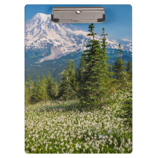 Avalanche lilies and Mount Rainier Clipboards