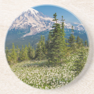 Avalanche lilies and Mount Rainier Coaster