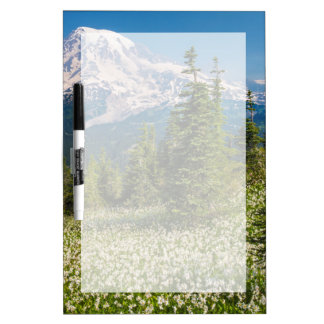 Avalanche lilies and Mount Rainier Dry-Erase Whiteboard