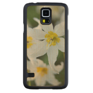 Avalanche Lilies at Paradise Park Carved Maple Galaxy S5 Case