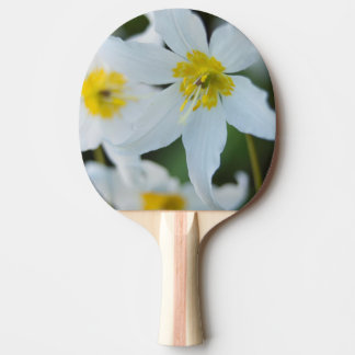 Avalanche Lilies at Paradise Park Ping Pong Paddle