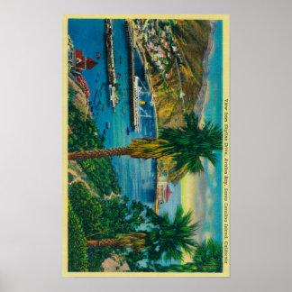 Avalon Bay, Santa Catalina Island from Skyline Poster