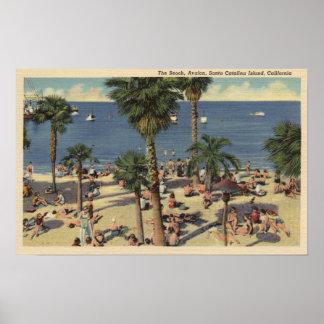 Avalon View of Beach w/ Sunbathers Poster