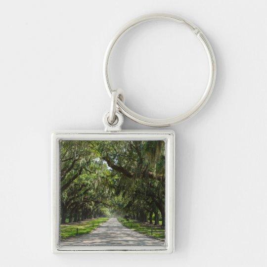 Avenue Of Oaks Key Ring