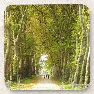 Avenue of Trees Hard Plastic Coasters