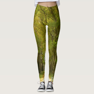 Avenue of Trees Leggings