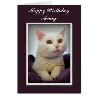 Avery Happy Birthday White Cat Card