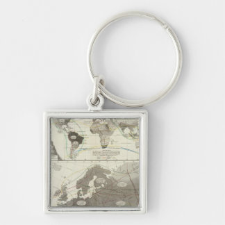 Aves, Birds Silver-Colored Square Key Ring
