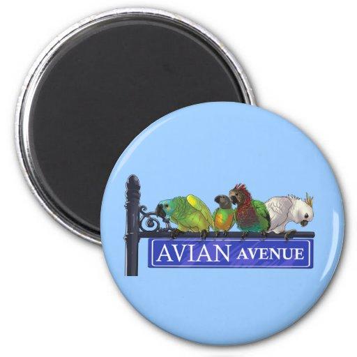 Avian Avenue Magnets