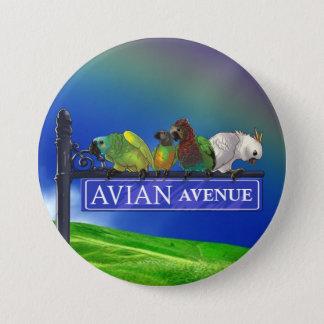 Avian Avenue Parrot Forum Button