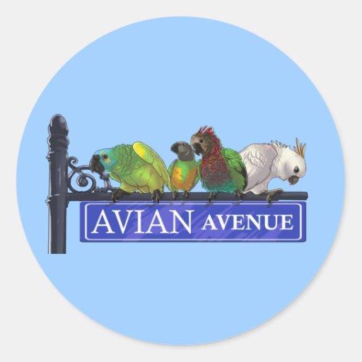 Avian Avenue sticker