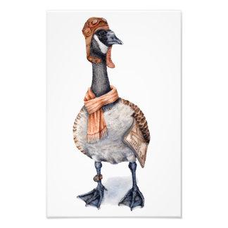 Aviator Goose Art Print Photographic Print