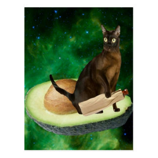 avocado cat postcard