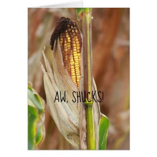 Aw, Shucks! Ear Of Corn Humor Autumn Corncob Card