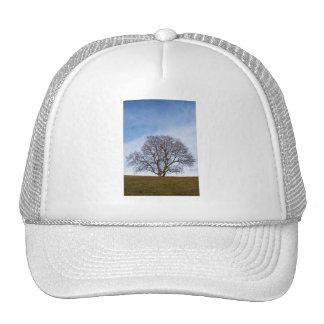 awaiting seasons cap