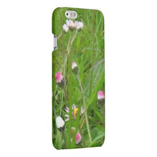 Awaking Daisies! iPhone 6 Matte Finish Case iPhone 6 Plus Case