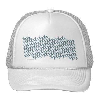 Awareness Through Movement® Standing On Repeat Hat