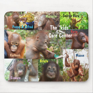 Awesome Apes- Kids at  Wildlife Care Center Mouse Mat