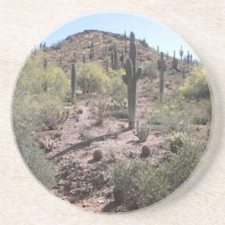 Awesome Cactus Garden Coaster
