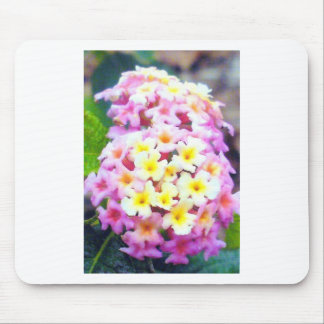 Awesome Garden Flowers Photo Design Image Mouse Pad