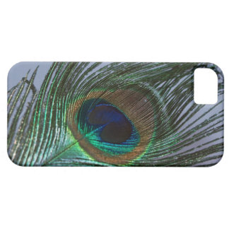 Awesome Peacock Feather Case For The iPhone 5