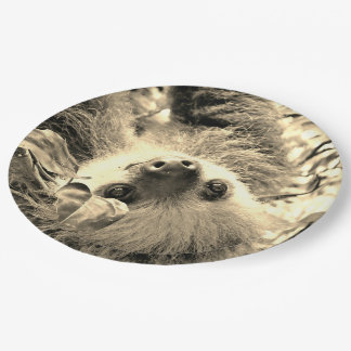 awesome Sloth sepia Paper Plate