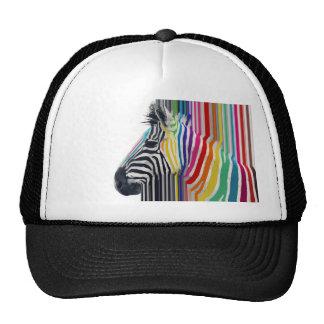 awesome trendy colourful vibrant stripes zebra cap