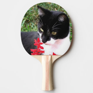 Awesome Tuxedo Cat in Garden Ping Pong Paddle