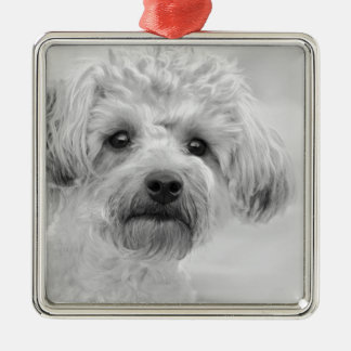 Awesome  Yorkie Poo in Sepia Tones Christmas Ornament