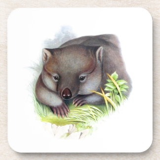 Awesomely cute Australian animal wombat vintage Coaster