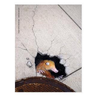 awkward mole postcard