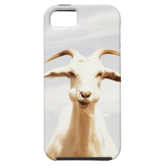 Awkward one iPhone 5 cases