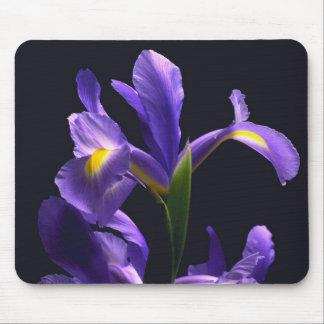 Awsome, purple Iris Mouse Mat